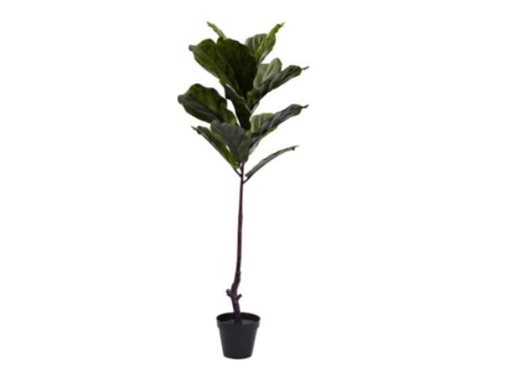 UV Resistant (indoors or outdoors) Fiddle Leaf Tree, Nearly Natural, 5448 4ft, Green